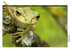 Cuban Tree Frog 000 Carry-all Pouch by Chris Mercer