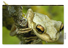 Cuban Tree Frog  Carry-all Pouch by Chris Mercer
