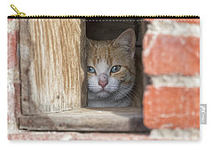 Cubby Cat Carry-all Pouch