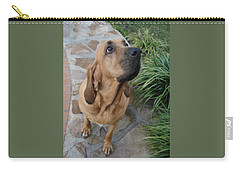 Cujo Looking At A Butterfly Carry-all Pouch by Val Oconnor