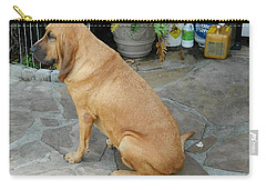Cujo Sitting Around Carry-all Pouch by Val Oconnor