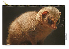 Carry-all Pouch featuring the photograph Curiosity At Rest by Laddie Halupa