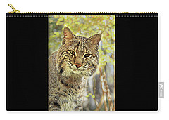 Carry-all Pouch featuring the photograph Curiosity The Bobcat by Jessica Brawley