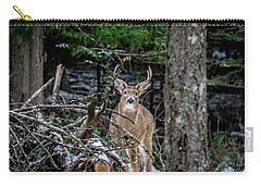 Curious Buck Carry-all Pouch