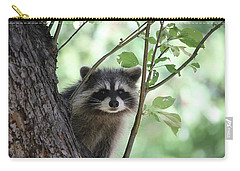 Curious But Cautious Carry-all Pouch by Doris Potter