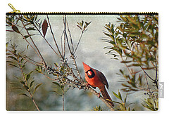 Curious Cardinal Carry-all Pouch