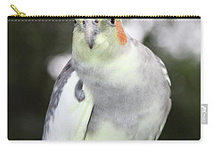 Curious Cockatiel Carry-all Pouch by Inspirational Photo Creations Audrey Woods