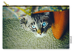 Carry-all Pouch featuring the photograph Curious Kitty by Silvia Ganora
