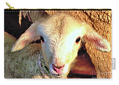 Curious Newborn Lamb Carry-all Pouch