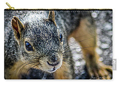 Carry-all Pouch featuring the photograph Curious Squirrel by Joann Copeland-Paul