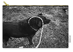 Carry-all Pouch featuring the photograph Curling by Jeanette O'Toole