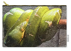 Curly Carry-all Pouch by Beth Saffer