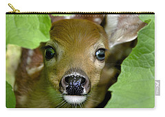 Carry-all Pouch featuring the photograph Curous Fawn by Adam Olsen