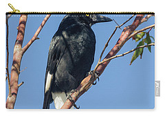 Currawong Carry-all Pouch by Werner Padarin