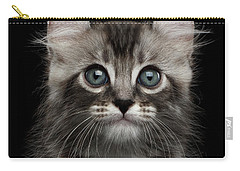 Cute American Curl Kitten With Twisted Ears Isolated Black Background Carry-all Pouch by Sergey Taran