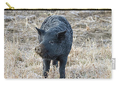 Carry-all Pouch featuring the photograph Cute Black Pig by James BO Insogna