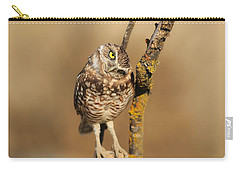 Cute Burrowing Owl Carry-all Pouch
