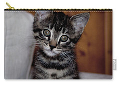 Carry-all Pouch featuring the photograph Cute by Laura Melis