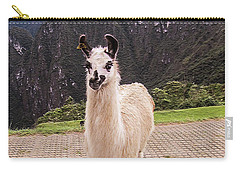 Cute Llama Posing For Picture Carry-all Pouch
