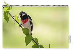 Cute Rose-breasted Grosbeak Carry-all Pouch