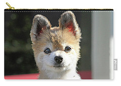 Cute Stare Down Carry-all Pouch