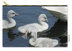 Cygnets Carry-all Pouch