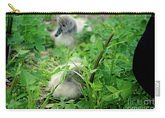 Cygnets V Carry-all Pouch by Cassandra Buckley