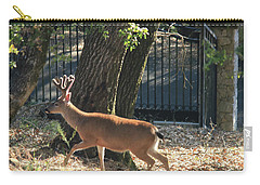 Carry-all Pouch featuring the photograph D8b6336 8 Point Buck At Our Home Ca by Ed Cooper Photography