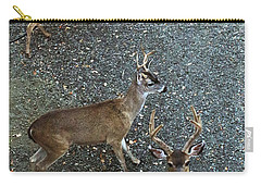 Carry-all Pouch featuring the photograph D8b6353 3 Mule Deer Bucks Ca by Ed Cooper Photography