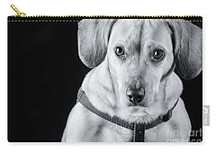Dachshund Lab Mix Carry-all Pouch by Stephanie Hayes