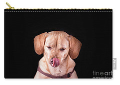 Dachshund Mix Licking Lips Carry-all Pouch by Stephanie Hayes