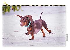 Dachshund On Beach Carry-all Pouch by Stephanie Hayes