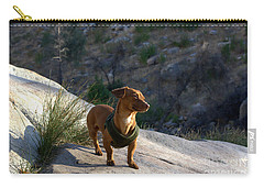 Dachshund's Delight Carry-all Pouch