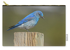 Daddy Bluebird Guarding Nest Carry-all Pouch