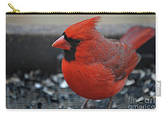 Daddy Cardinal  Carry-all Pouch by Skip Willits