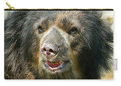 Daddy Cisco The Andean Bear Carry-all Pouch