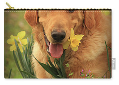 Daffodil Dreams Carry-all Pouch by Kim Henderson