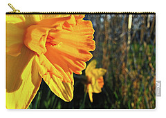 Carry-all Pouch featuring the photograph Daffodil Evening by Robert Knight