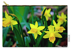 Daffodils A Symbol Of Spring Carry-all Pouch
