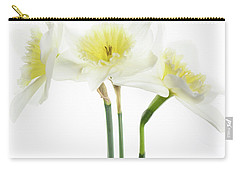 Dafs Carry-all Pouch by Rebecca Cozart