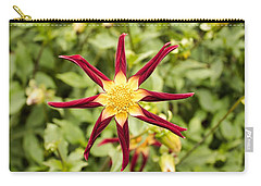 Carry-all Pouch featuring the photograph Dahlia Star by Brian Eberly