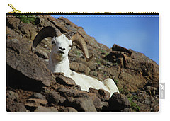 Dall Sheep Carry-all Pouch