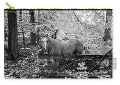 Dappled Face Horse II Carry-all Pouch