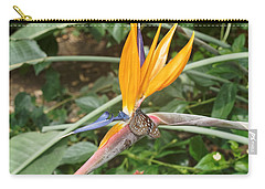 Carry-all Pouch featuring the photograph Dark Blue Tiger Butterfly - 2 by Paul Gulliver