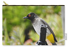 Carry-all Pouch featuring the photograph Dark-capped Bulbul by Betty-Anne McDonald