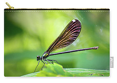 Carry-all Pouch featuring the photograph Dark Damsel by Bill Pevlor