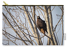 Carry-all Pouch featuring the photograph Dark-morph Western Red-tailed Hawks by Ricky L Jones