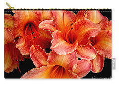Daylilies 1 Carry-all Pouch by Rose Santuci-Sofranko
