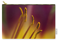 Daylily Abstract Carry-all Pouch