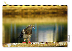 Daytona Beach Pigeon Carry-all Pouch by Chris Mercer